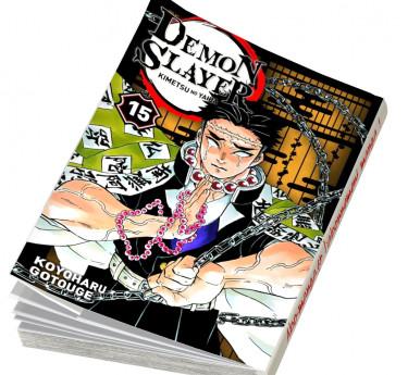 Demon Slayer Demon Slayer T15