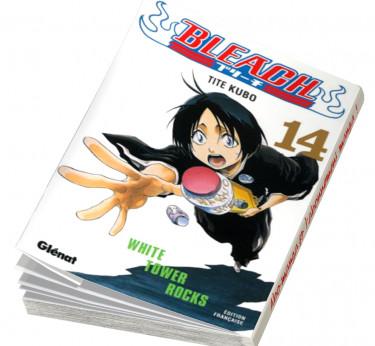 Bleach Bleach T14