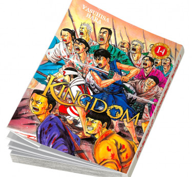 Kingdom Kingdom T14