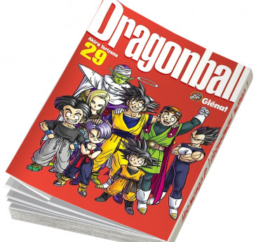 Dragon ball Perfect edition Dragon ball Perfect edition T29