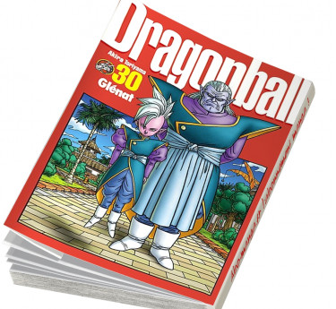 Dragon ball Perfect edition Dragon ball Perfect edition T30